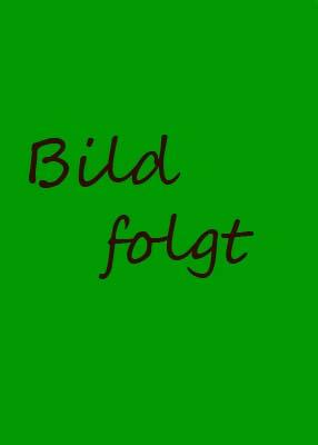 Bodo Wolff